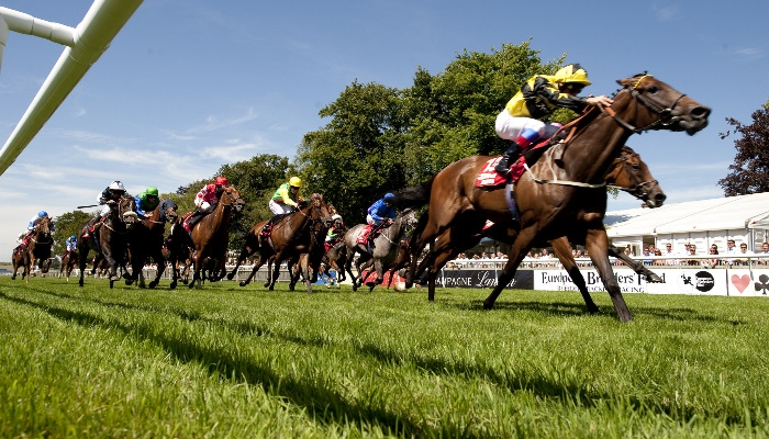 Join In The Thrill Of The Race forecasting